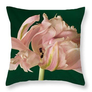 Lacey Tulip Throw Pillow