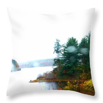 Throw Pillow featuring the photograph Lack by Rose Wang
