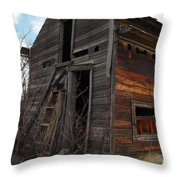 Ladder Against A Barn Wall Throw Pillow by Jeff Swan