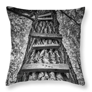 Ladder To The Treehouse Throw Pillow