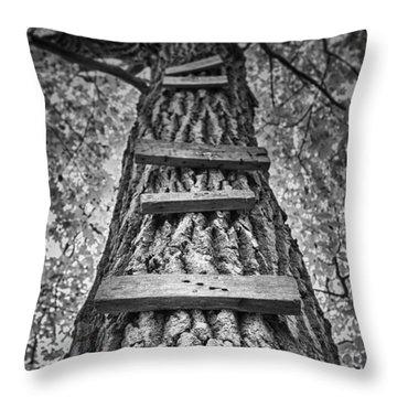 Maple Shade Throw Pillows