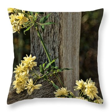 Throw Pillow featuring the photograph Lady Banks Rose by Peggy Hughes