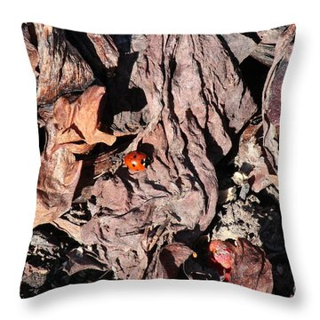 Lady Bug In Spring Throw Pillow