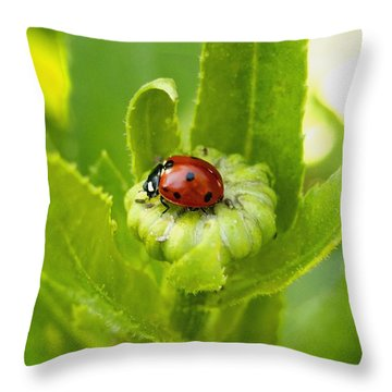 Lady Bug In The Garden Throw Pillow by Amy McDaniel