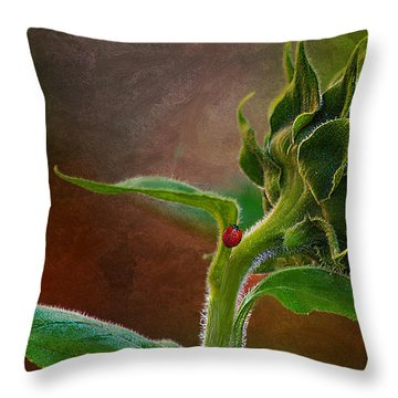 Throw Pillow featuring the photograph Lady In The Sun by John  Kolenberg
