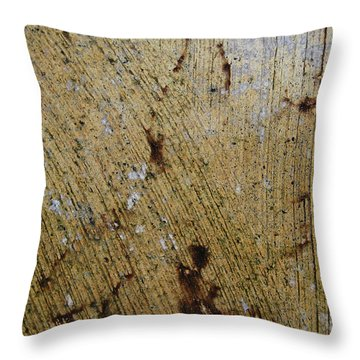 Throw Pillow featuring the photograph Lady Leaf by Jani Freimann