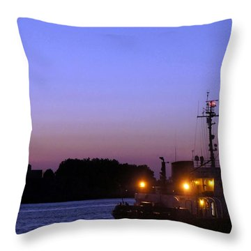 Throw Pillow featuring the photograph Lady Liberty At Dusk by Lilliana Mendez