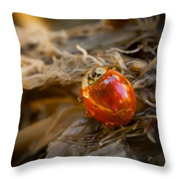 Lady Of Leisure Squared Throw Pillow by TK Goforth