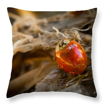 Lady Of Leisure Throw Pillow by TK Goforth