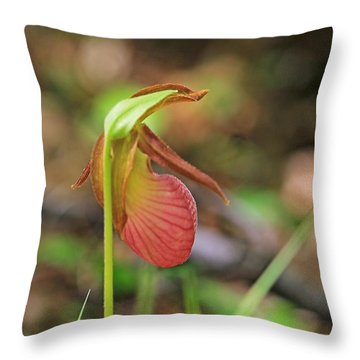 Lady Slippers At Moore State Park 4 Throw Pillow