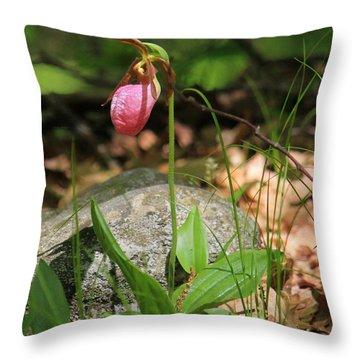 Lady Slippers At Moore State Park 3 Throw Pillow