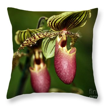 Lady Slipper Orchid Twins Throw Pillow