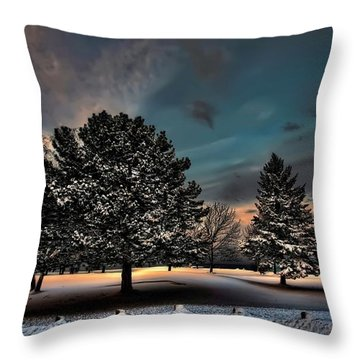 Lady Winter  Bringing A Cold Snap Throw Pillow
