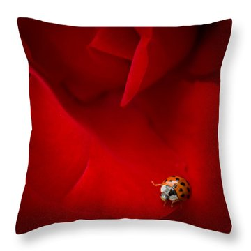 Ladybird In Rose Throw Pillow by Peta Thames