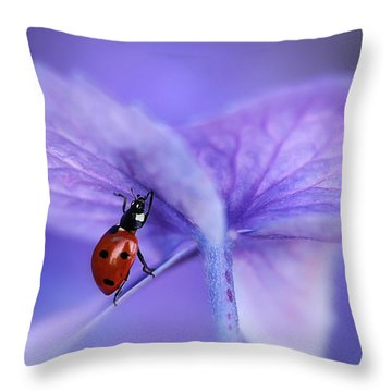 Ladybird Throw Pillows