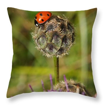 Throw Pillow featuring the digital art Ladybird by Ron Harpham