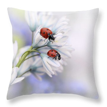 Ladybug Throw Pillows