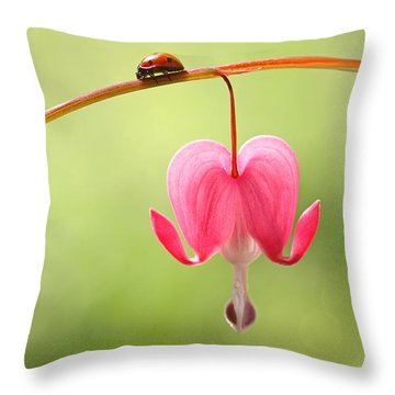 Ladybug And Bleeding Heart Flower Throw Pillow by Peggy Collins