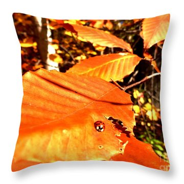 Ladybug At Fall Throw Pillow