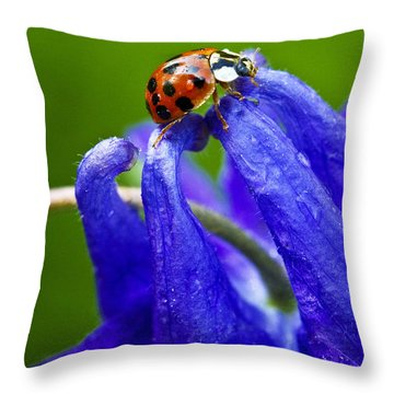 Ladybug Throw Pillow by Carrie Cranwill