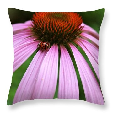 Ladybug On A Coneflower Throw Pillow