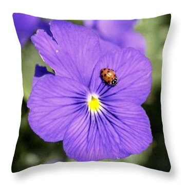 Ladybug On Flower Throw Pillow