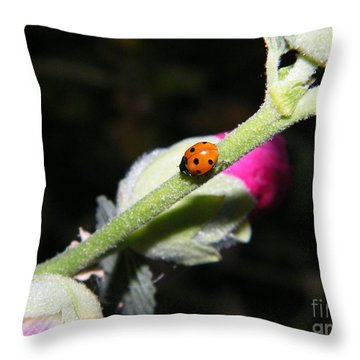 Ladybug Taking An Evening Stroll Throw Pillow