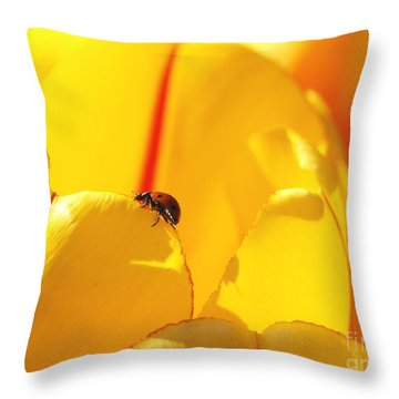 Ladybug - The Journey Throw Pillow by Susan  Dimitrakopoulos