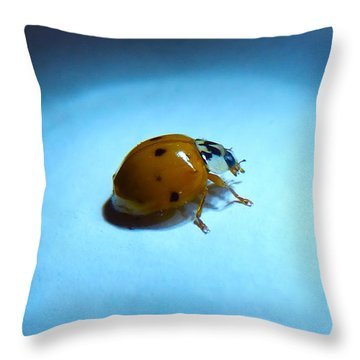 Ladybug Under Blue Light Throw Pillow