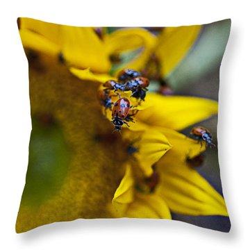 Ladybugs Close Up Throw Pillow by Garry Gay