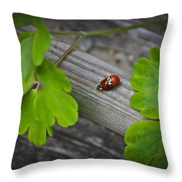 Ladybugs Mating Throw Pillow