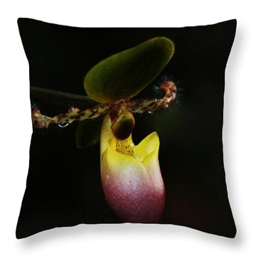 Ladys Slipper Orchid Throw Pillow