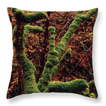 Lael Forest Garden 1 Throw Pillow