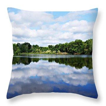 Lagoon IIi Throw Pillow by Joe Faherty