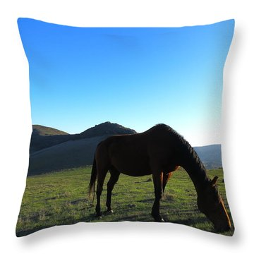 Laguna Hills Grazing Throw Pillow by Paul Foutz