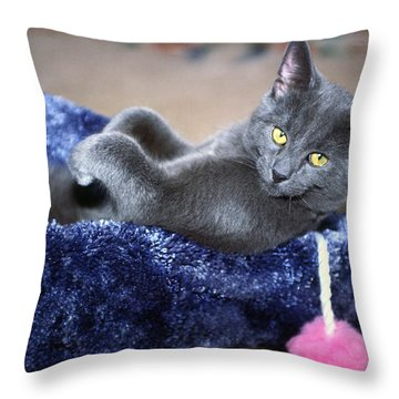 Laid Back Throw Pillow by Sally Weigand