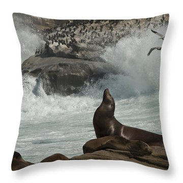 Lajolla Surf N Nature Preserve Throw Pillow by Daniel Hebard