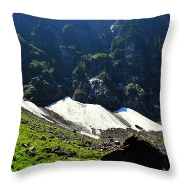 Throw Pillow featuring the photograph Lake 22 Path by Rebecca Parker