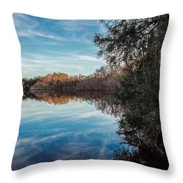 Lake Alice Throw Pillow by Louis Ferreira
