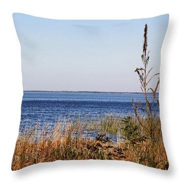 Throw Pillow featuring the photograph Lake Apopka 2 by Chris Thomas