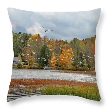 Lake Carmi Autumn 2012 Throw Pillow by Deborah Benoit