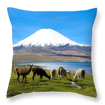 Lake Chungara Chilean Andes Throw Pillow