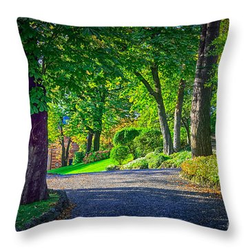 Lake Como Path Throw Pillow