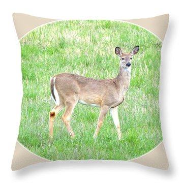 Lake Country Doe   Throw Pillow by Will Borden
