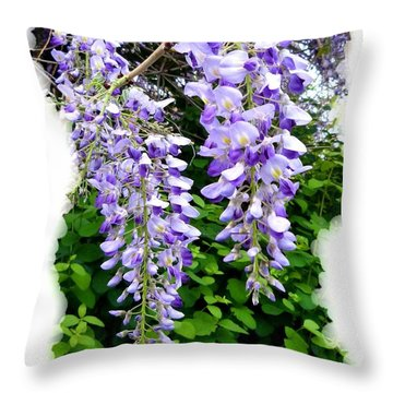 Lake Country Wisteria Throw Pillow by Will Borden