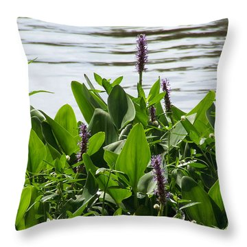 Lake Day Throw Pillow by Andrea Anderegg
