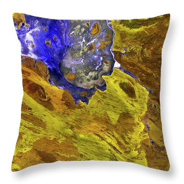 Disappointment Throw Pillows