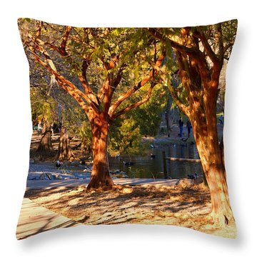 Lake Ella Trail Throw Pillow
