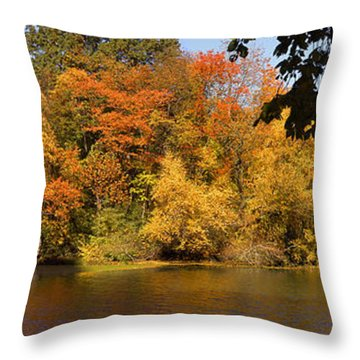 Throw Pillow featuring the photograph Lake In Central Park In Fall by Yue Wang