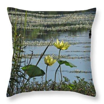 Throw Pillow featuring the photograph Lake Marion Morning by Deborah Smith